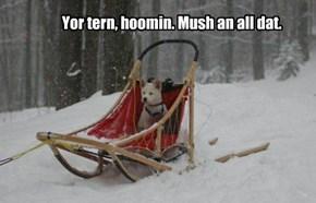 Yor tern, hoomin. Mush an all dat.