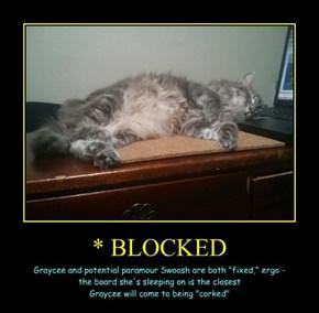 * BLOCKED