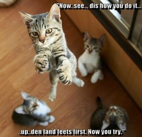 """Now..see.., dis how you do it...  ..up..den land feets first. Now you try."""