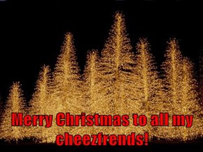 Merry Christmas to all my cheezfrends!