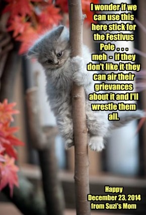 I wonder if we can use this here stick for the Festivus Pole  .  .  .   meh  -  if they don't like it they can air their grievances about it and I'll wrestle them all.