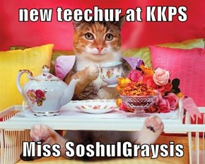 new teechur at KKPS  Miss SoshulGraysis