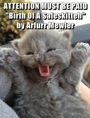 """ATTENTION MUST BE PAID  """"Birth Of A Saleskitteh"""" by Arfurr Mewler"""