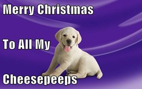 Merry Christmas To All My Cheesepeeps