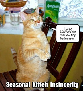 Seasonal Kitteh Insincerity