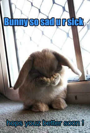 Bunny so sad u r sick