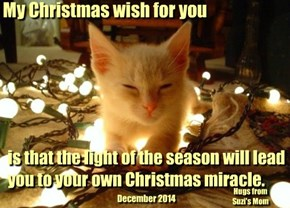 My Christmas wish for you