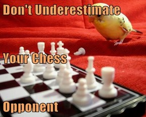 Don't Underestimate Your Chess Opponent
