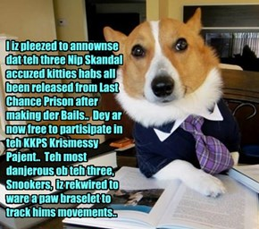 Great news for teh KKPS Community az KKPS alumnus Judge Goggie sets bail for teh infamous Catnip Scandal miscreants Principal Dontebanfinkabout, Mr. AwlThumbs an' Snookers..  And teh Krismas Pajent will go on as planned!!