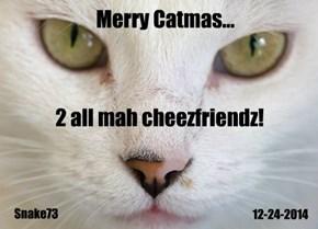 Merry Catmas!