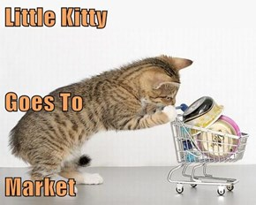 Little Kitty Goes To Market
