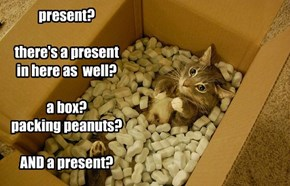 present?  there's a present in here as  well?  a box? packing peanuts?  AND a present?