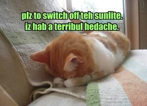 plz to switch off teh sunlite. iz hab a terribul hedache.