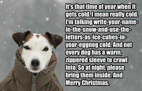 It's that time of year when it gets cold. I mean really cold. I'm talking write-your-name-in-the-snow-and-use-the-letters-as-ice-cubes-in-your-eggnog cold. And not every dog has a warm, zippered sleeve to crawl into. So at night, please bring them inside.