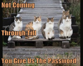 Not Coming Through Till You Give Us The Password