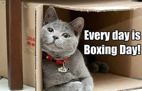 December 26?  Every day is Boxing Day!
