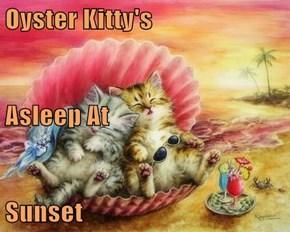 Oyster Kitty's Asleep At Sunset