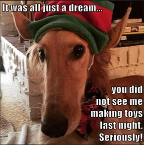 It was all just a dream...  you did                                                             not see me                                                                           making toys