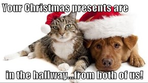 Your Christmas presents are  in the hallway...from both of us!