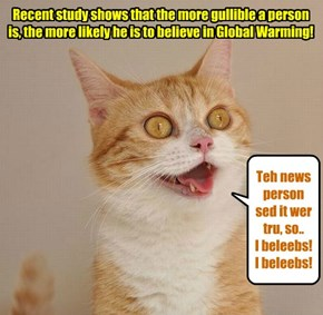 Uncritical thinking on the part ob som kitties..