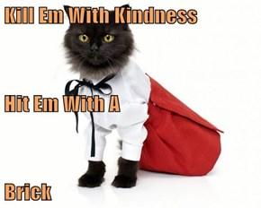 Kill Em With Kindness Hit Em With A Brick