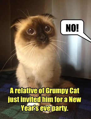 New year, same old Grumpy Cat.