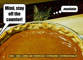The pie crept away on little cat feet (apoLOLogies to Carl Sandburg