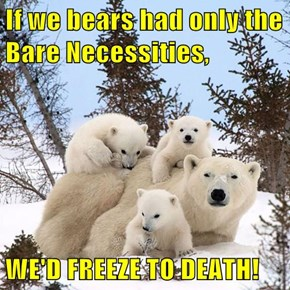If we bears had only the Bare Necessities,  WE'D FREEZE TO DEATH!