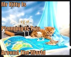 Mr Kitty Is Planning Is Trip Around The World