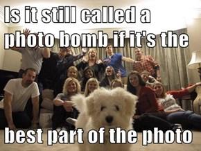 Who's Photobombing Who?
