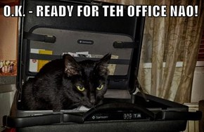 O.K. - READY FOR TEH OFFICE NAO!