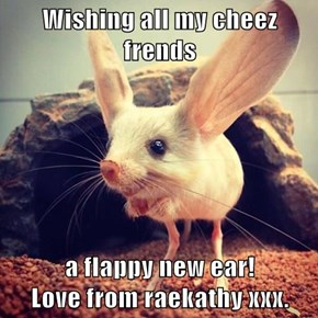 Wishing all my cheez frends  a flappy new ear!              Love from raekathy xxx.