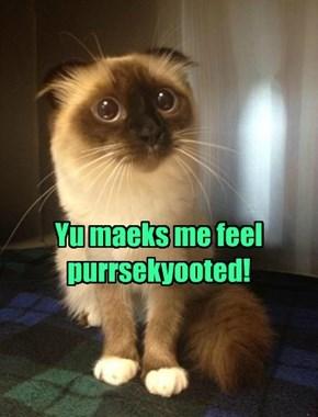 Oh, so sorry, kitty!