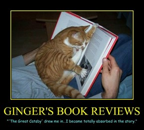 GINGER'S BOOK REVIEWS