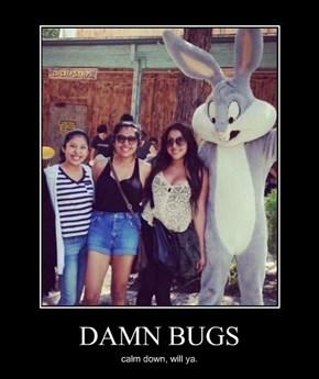He's a Randy Rabbit