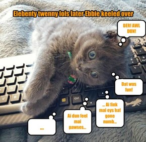 The Internets Uses up Another Lolcat