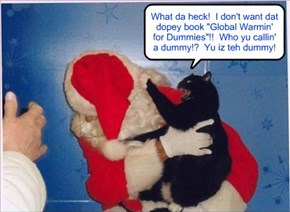 What happens when teh Conservativ kittie gets in teh wrong line to teh Liberal Santa..