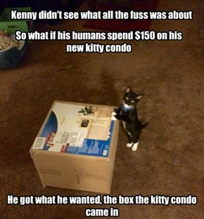 Kenny didn't see what all the fuss was about