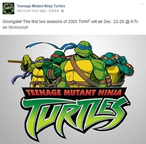 Time For Best Turtles