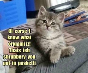 Of  corse  I  know  what  origami iz!  Thats  teh  shrubbery  you  put  in  pasketti
