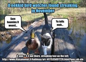 A nekkid bird watcher found streaking, in November