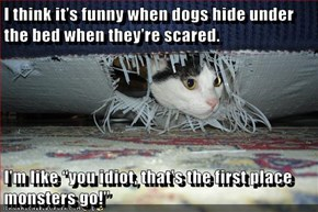 "I think it's funny when dogs hide under the bed when they're scared.  I'm like ""you idiot, that's the first place monsters go!"""