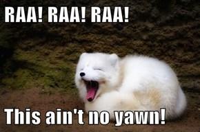 RAA! RAA! RAA!  This ain't no yawn!