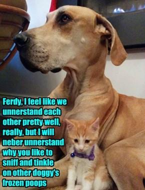 Interspecies Confusion