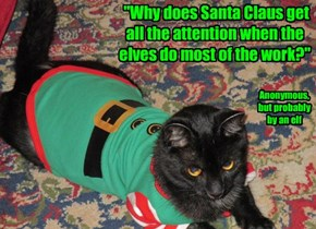 """""""Why does Santa Claus get all the attention when the elves do most of the work?"""""""