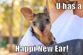 U has a  Happi New Ear!