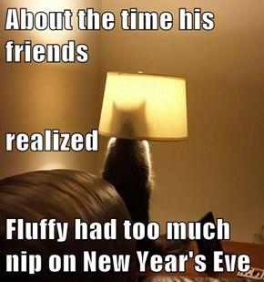 About the time his friends realized Fluffy had too much nip on New Year's Eve