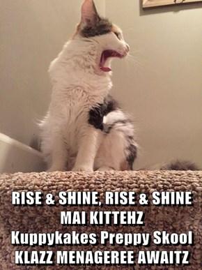 RISE & SHINE, RISE & SHINE MAI KITTEHZ                     Kuppykakes Preppy Skool KLAZZ MENAGEREE AWAITZ