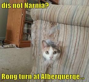 dis not Narnia?  Rong turn at Alberquerqe...