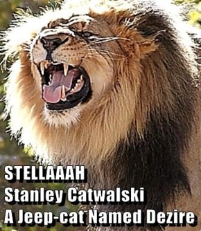 STELLAAAH                 Stanley Catwalski                A Jeep-cat Named Dezire